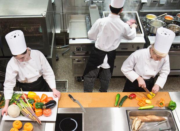 A importância da dedetização empresarial no segmento alimentício